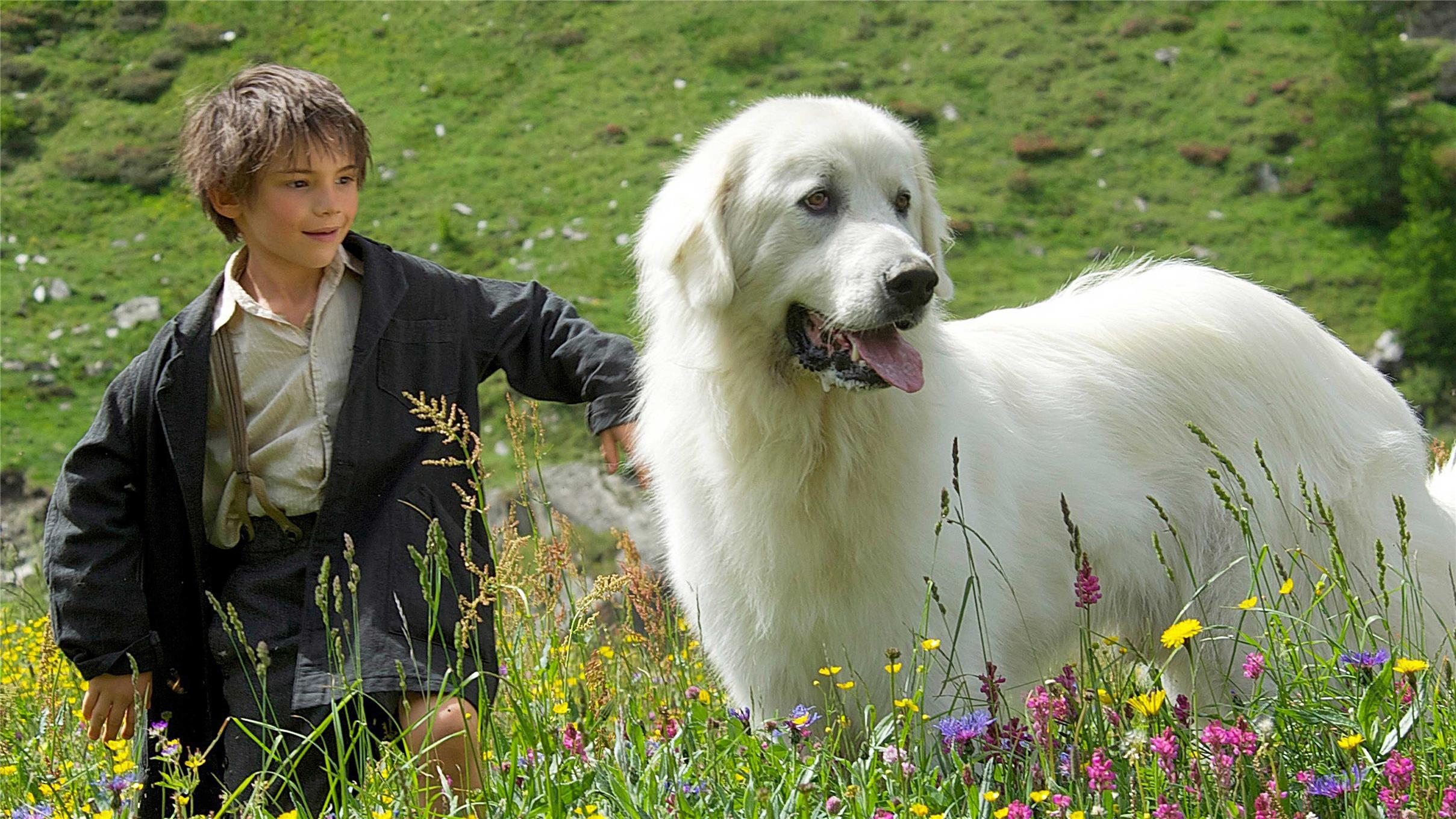 Belle et Sebastien